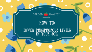 how to lower phosphorous levels in soil